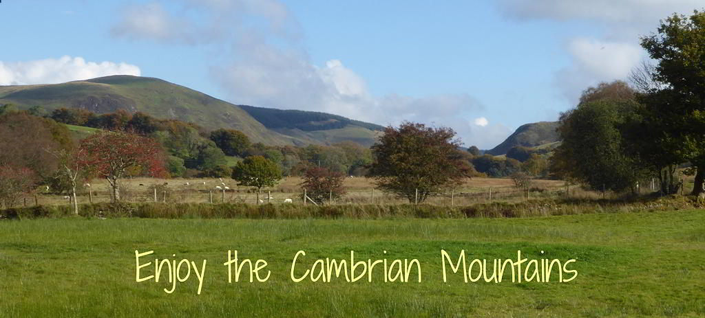 View of Cambrian Mountains