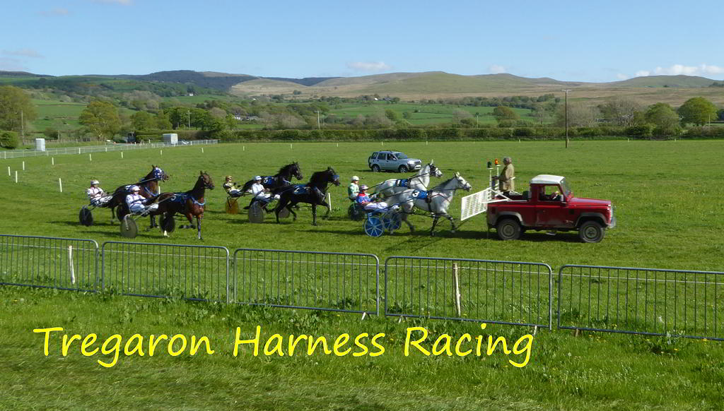 Tregaron Harness Racing