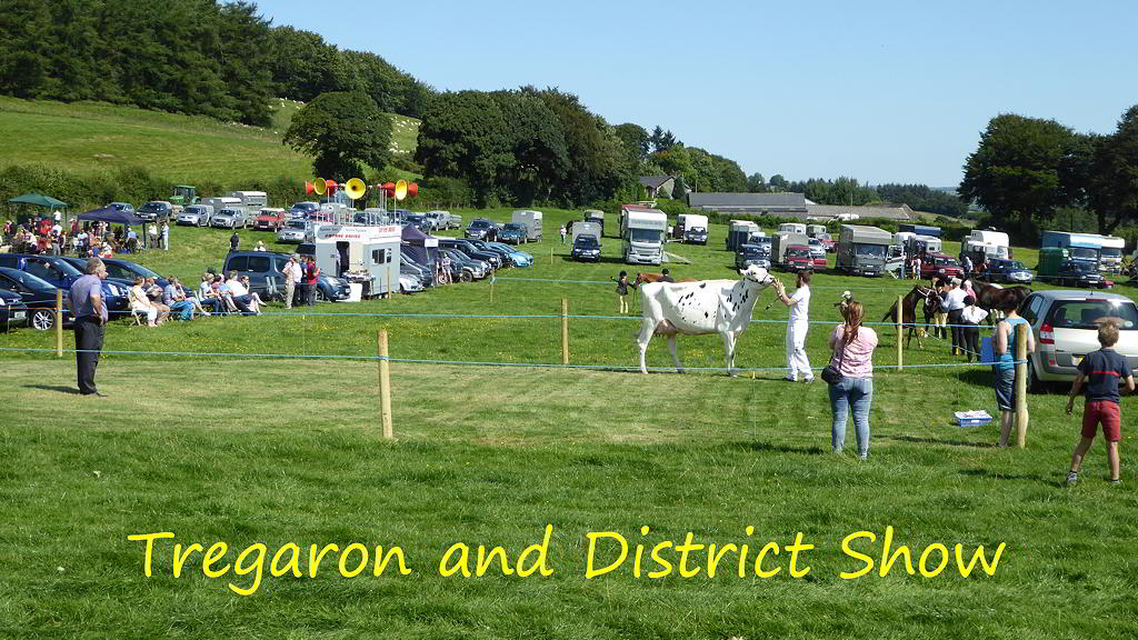 Treagaron and District Show