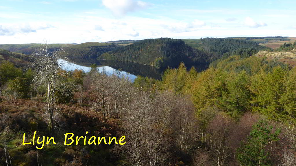 View of Llyn Brianne
