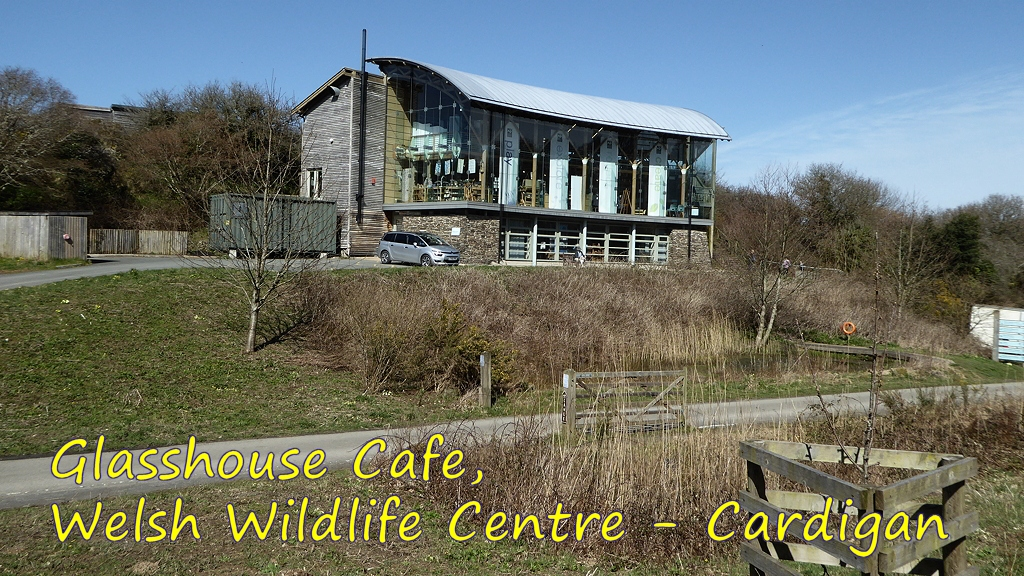 Welsh Wildlife Centre Glasshouse Cafe