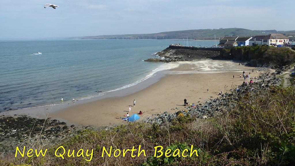 View of New Quay North Beach