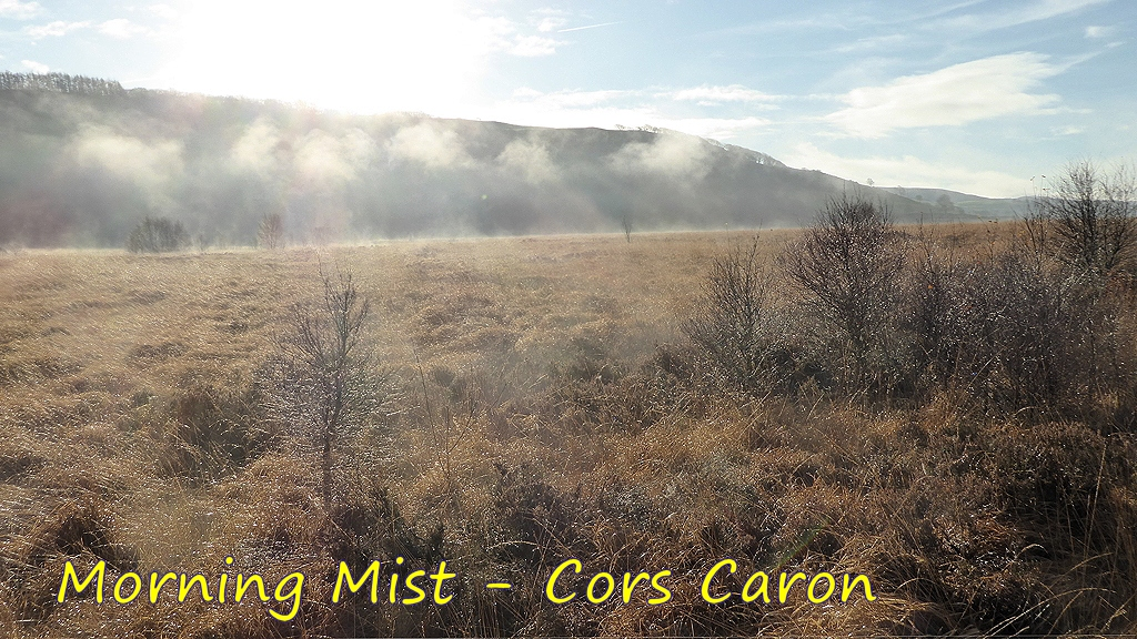 Morning Mist at Cors Caron